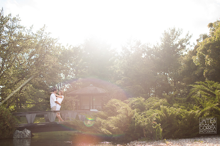 Japanese Botanical Gardens Montreal Wedding Photographer