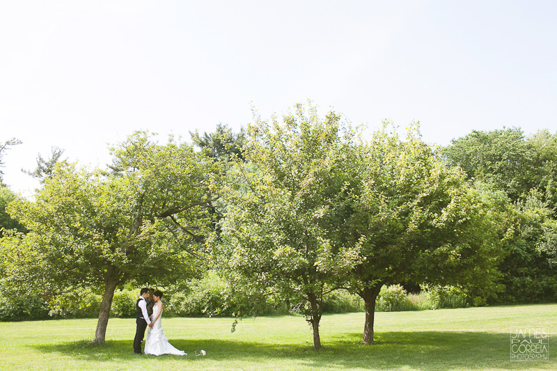 German Mills Settlers Park Toronto Wedding Photographer under the trees