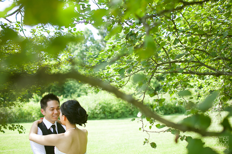 German Mills Settlers Park Toronto Wedding Photographer tree grove