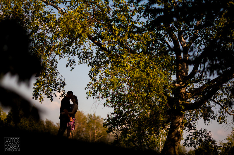 Montreal-Botanical-Gardens-couple-session-Photography