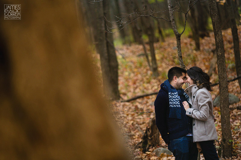 rigaud-rustic-fall-engagement-session