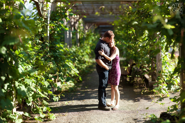 montreal botanical gardens wedding photographer