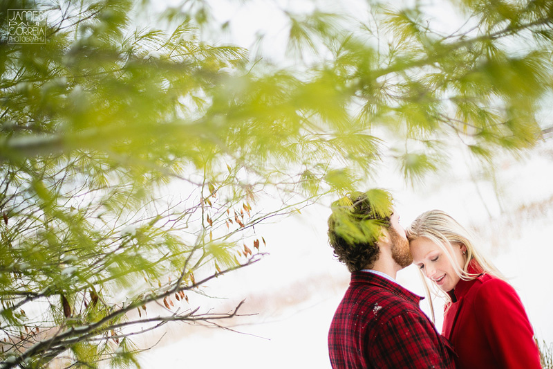 evergreen brickworks toronto engagement photography 004 under pine tree