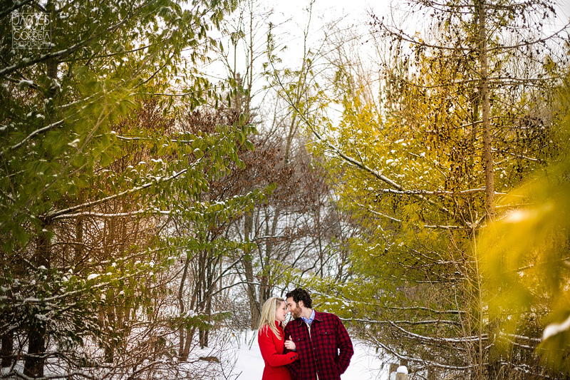 evergreen brickworks toronto engagement photography 005 in forest