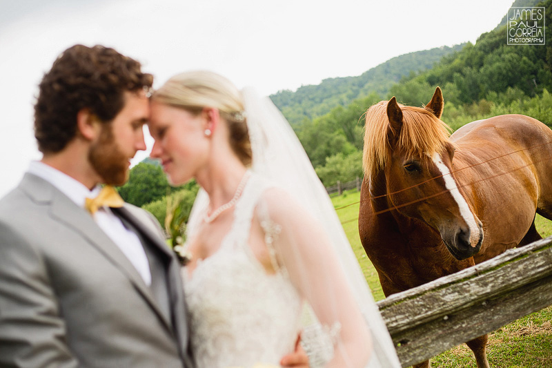 Bromont Wedding Photographer portraits with horse