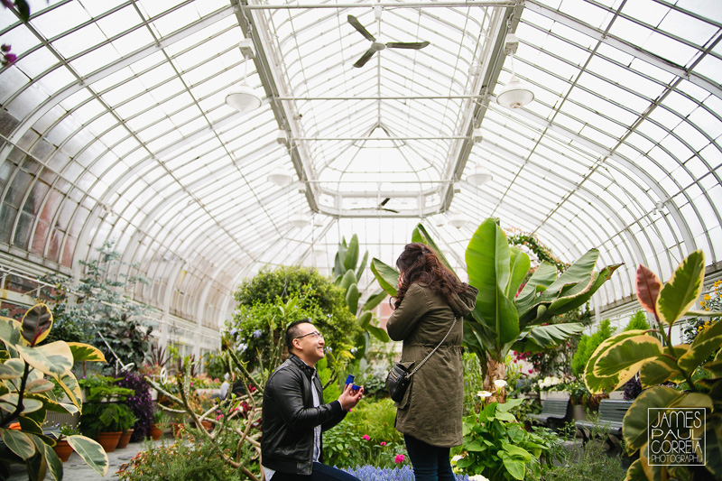 Montreal Westmount greenhouse Surprise marriage Proposal