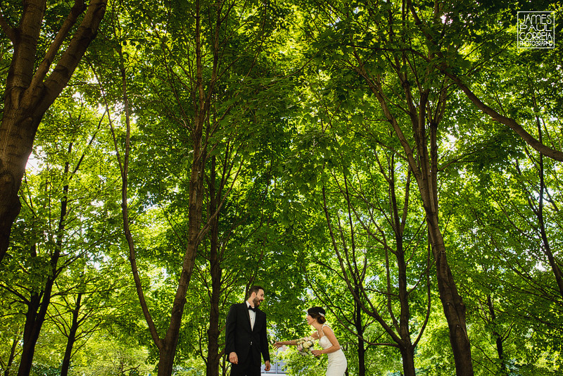 Plaza Volare Montreal Wedding Photographer