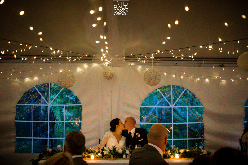 southern ontario backyard wedding reception photographer