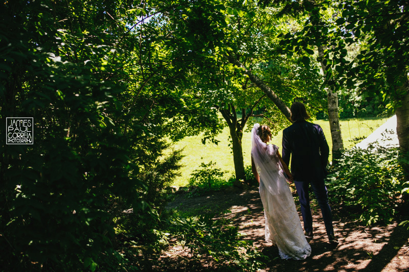 toronto forest wedding photographer