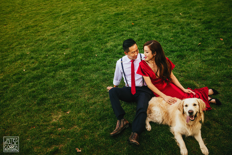 Engagement Session with Pet dog